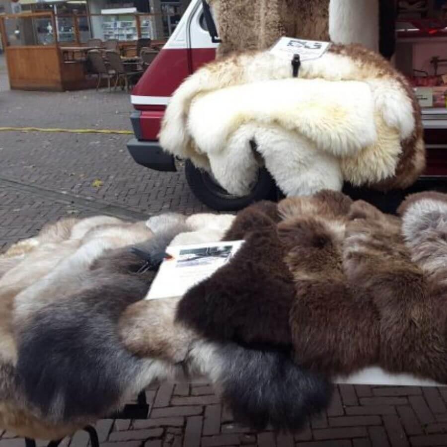 Schitterende schapenvachten